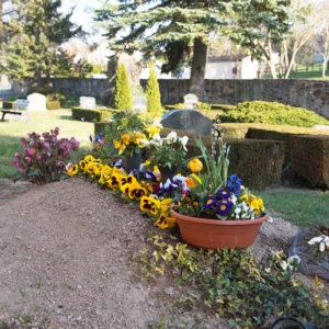 Grabstelle Friedhof Bockelwitz